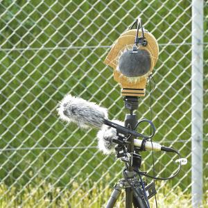soundscape / binaural field recording by Makio UTO