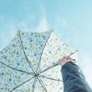 傘と暮らすぼくたちの