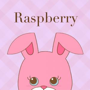 Raspberry's Grimoire