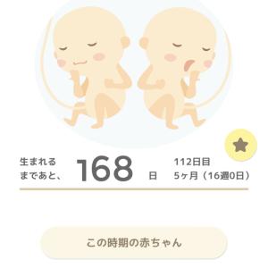 145cm妊婦*一卵性双子ちゃん妊娠日記