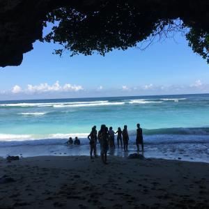 バリ島とジャングル育ち