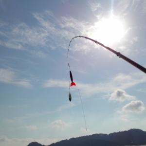 釣りは、やっぱり楽しいなぁ~♪partⅢ