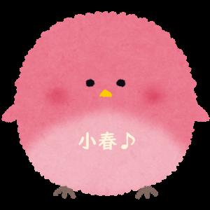 いろなび.com