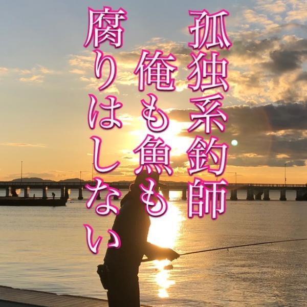 Taizoさんのプロフィール