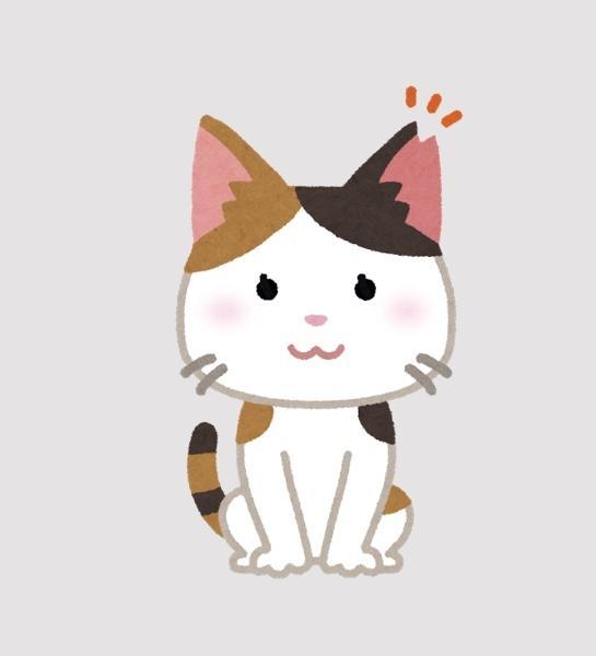 猫にゃんネットワーク府中さんのプロフィール