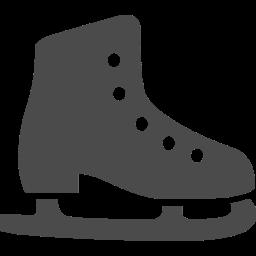 ただのフィギュアスケートファンのロシア語翻訳