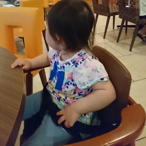 2歳児と旅行に行くための陸マイラー日記