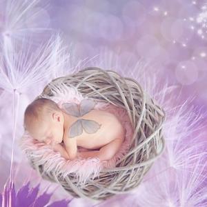 引き寄せの法則的★ゆるふわ妊活始めませんか?