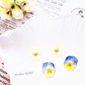 レジンフラワーアクセサリー♡ 季節の花で作るハンドメイドアクセサリー教室♡ Jeu de fleurs ♡