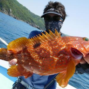 鹿児島 錦江湾の遊漁船 海晴丸の釣果ブログ