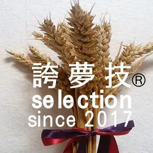 誇夢技selection