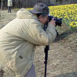 Aoto Photo