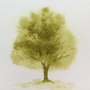 透明水彩!初心者向け描き方・塗り方のコツ情報サイト