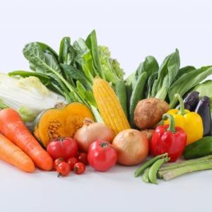 野菜大好き家族の「宅配野菜はじめました」ブログ