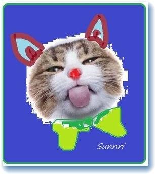sunnriさんのプロフィール