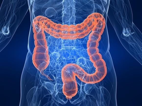 病気は腸管刺激で治す