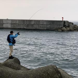 釣りばっかし