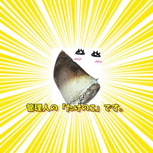 オモイダシ – (シカクシメン)なブログ