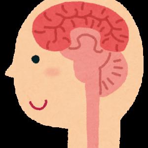 ずいまくんといっしょ 髄膜腫のおかげで面白い経験がいっぱいできたブログ