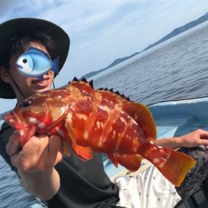enjoyfishing シマリキ奮闘記