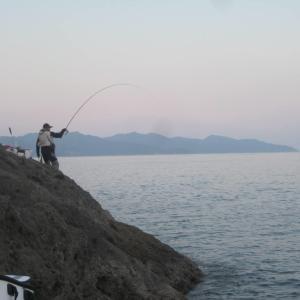 暇さえあれば釣りに行こう