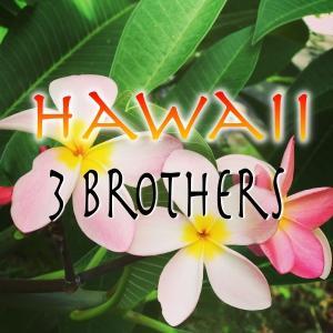 ハワイ三兄弟