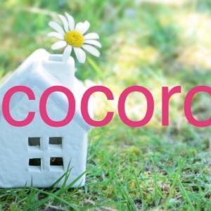 cocoro bloom