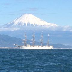 カゴ釣り三昧 Shonan seaside