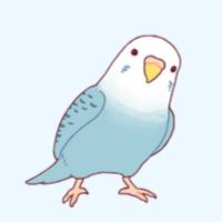 Love Birds 夫婦円満には秘訣がある