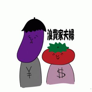 アラサー浪費家夫婦!!借金返済~資産形成を目指す!!