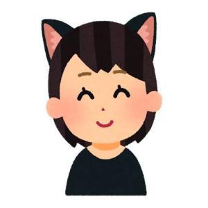 猫耳のドラマ生活