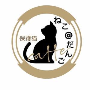 保護猫カフェ ねこ@だんご
