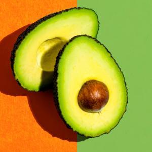 食事と運動から理想の体を目指すトータルサイト|フーダニット