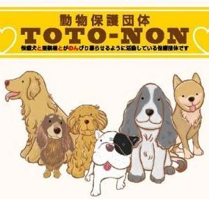 非営利動物保護団体ととのん活動ブログ