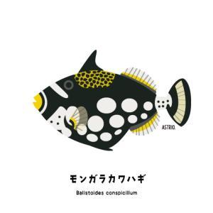 Marine Life Log イラストで綴る、海の生き物ログ