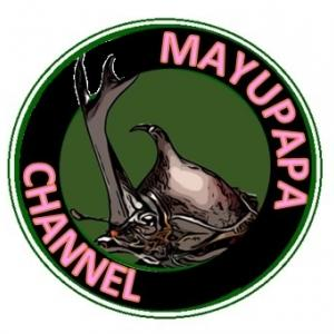 【統合版】MAYUPAPAのマイクラ日記ブログ