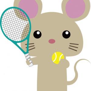 初心者のためのテニスまとめ