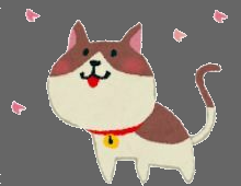 猫好きさんのプロフィール