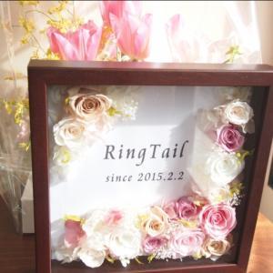 菊川市 美容室リングテイルのほほん日々blog
