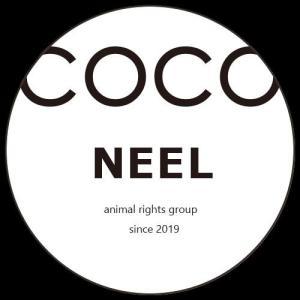 ~COCO NEEL animal 活動報告ブログ~