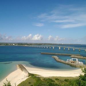宮古島の離島来間島から海猫花