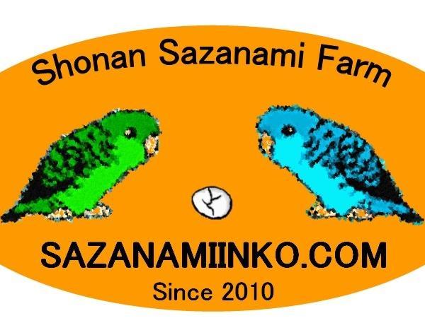 sazanamiinko.comさんのプロフィール