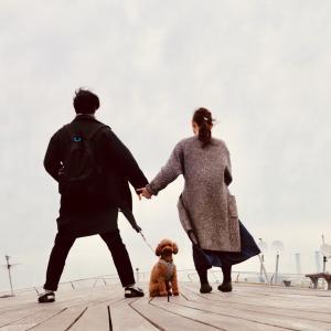 犬と夫婦の3人田舎暮らし日記。