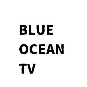 ブルーオーシャンTV・ブログ版(2020ドラフト情報など野球の話題)