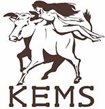 ケムスの作品