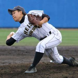 Here is women's baseball world
