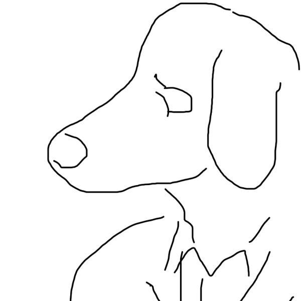 白犬さんのプロフィール