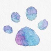 新あんこのログ:脳出血したら障害者に転生したので二兎を得た