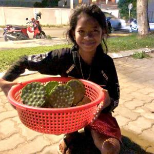 そうだ、カンボジアに支援しよう