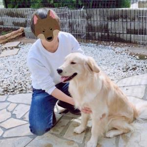 長野に暮らす心理士と犬のブログ